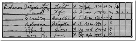 Patrick 1900 Census Detail