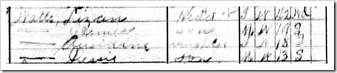 Eliza 1910 Census