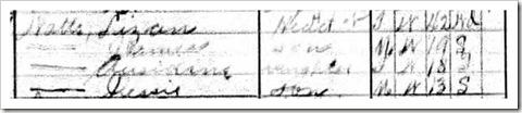 Eliza 1910 Census