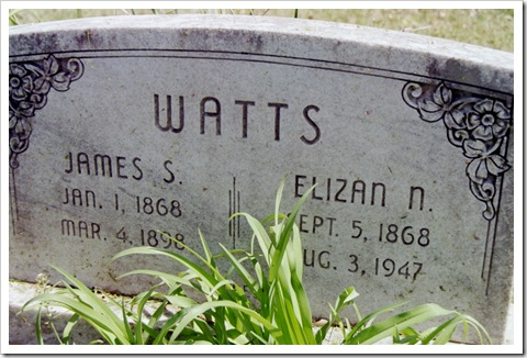 James S. and Elizan N. Watts